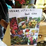 craftfair0318g8.JPG