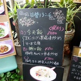 hyakoutei0501a2.JPG