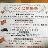 kouyousai1114a1.JPG
