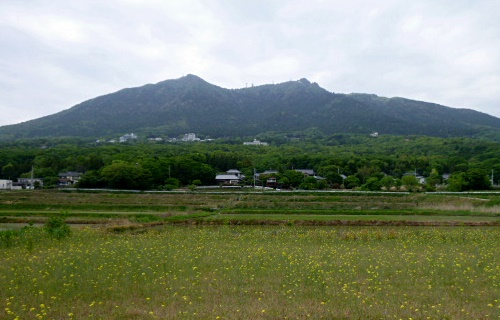mashiko0506h.JPG