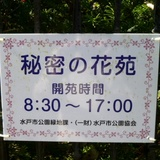 KunitadeArt1021e1.JPG