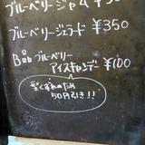 koyofes1110d3.JPG