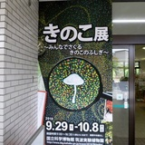 mushroom0929a1.JPG