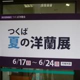 syokubutsuen0623b1.JPG