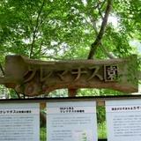 syokubutsuen0623c1.JPG