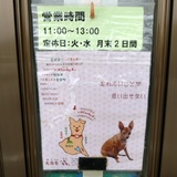 tsukubasan0512f1.JPG