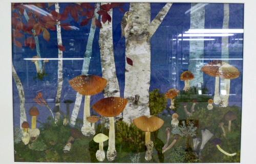 mushroom0929f.JPG
